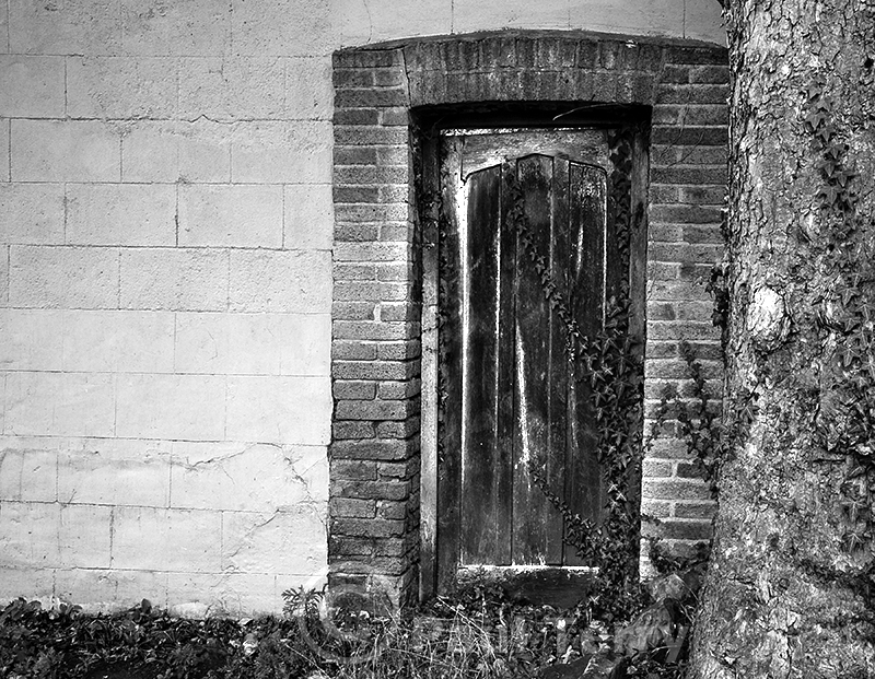 The Narrow Door 1