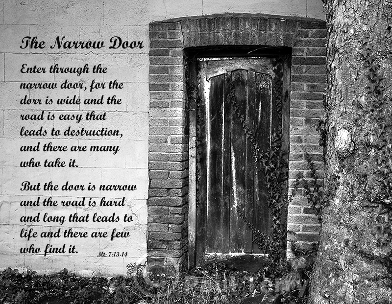 The Narrow Door 2
