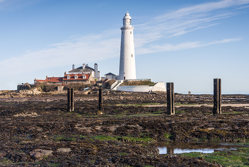 Paul Terry_St. Marys Lighthouse
